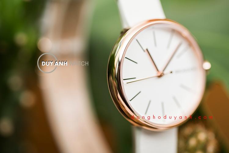 Đồng hồ Skagen Signatuar SKW2595